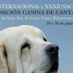 Exposición Canina de Cantabria 2013 en Ribamontán al Mar el 29 y 30 de junio