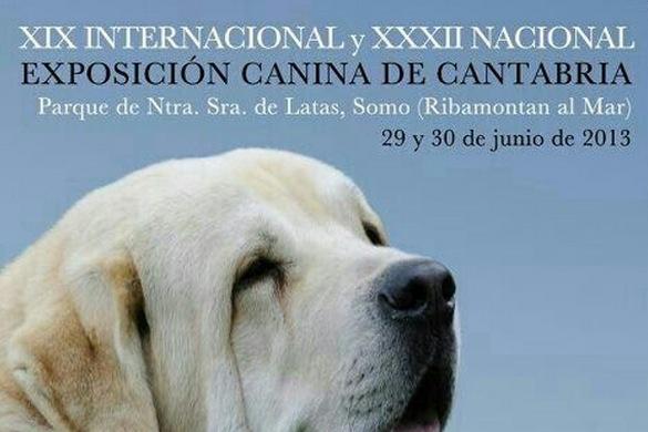 exposicion canina de cantabria