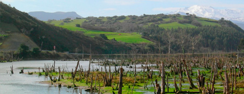 Ría de Oyambre o Ría de la Rabia