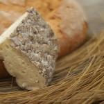 Cantabria es sinónimo de Gastronomía, Cultura y Deporte