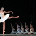 El Lago de los Cisnes en el Palacio de Festivales el día 16 de Noviembre