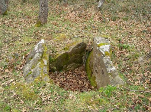 restos-megaliticos-de-dobarganes
