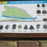Ecomuseo Forestal en Pesquera