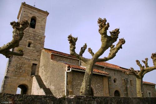 Viajar por cantabria informaci n tur stica de cantabria for Viveros en rosario