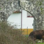 Ruinas de la Torre en Santiuste